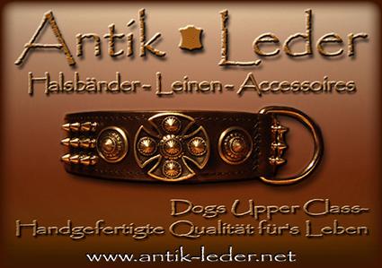 exklusive lederhalsb nder by www antik group com keltischer ring in aschaffenburg tiere. Black Bedroom Furniture Sets. Home Design Ideas