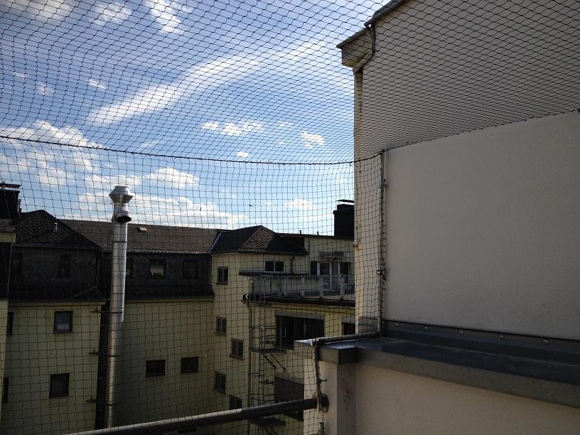 Katzennetz Balkon Montage | Montage Von Katzenschutznetz An Balkon Oder Terrasse Angebot Und