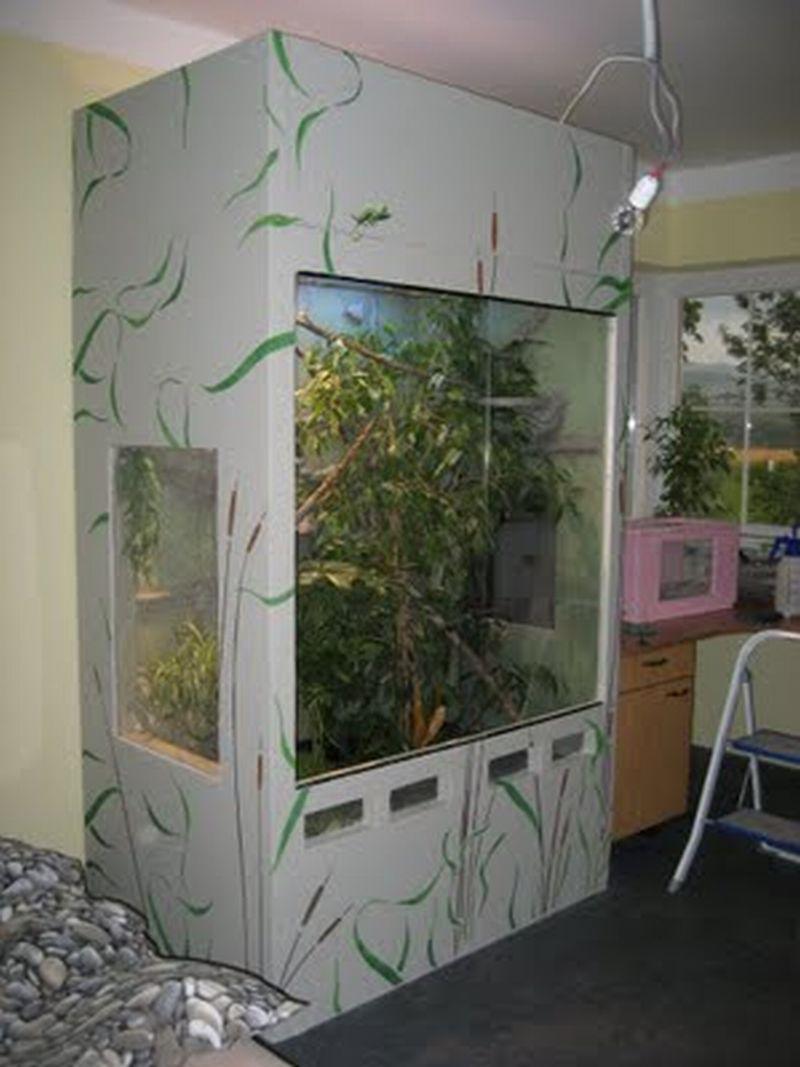 terrarien bau auch nach ihren w nschen in neunkirchen tiere kleinanzeigen. Black Bedroom Furniture Sets. Home Design Ideas