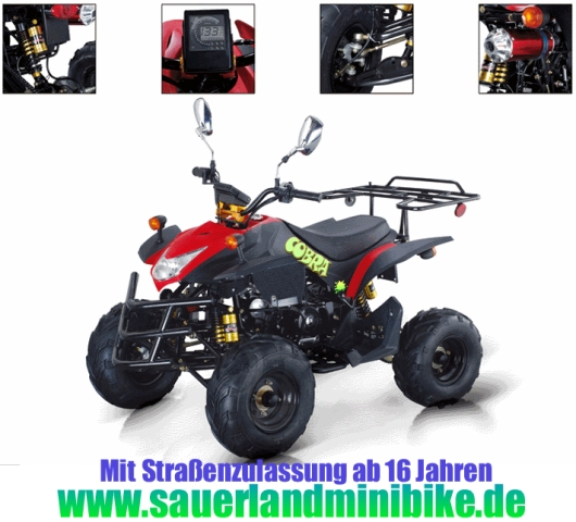 quad atv city cobra 50 mit strassenzulassung neu ab 16. Black Bedroom Furniture Sets. Home Design Ideas