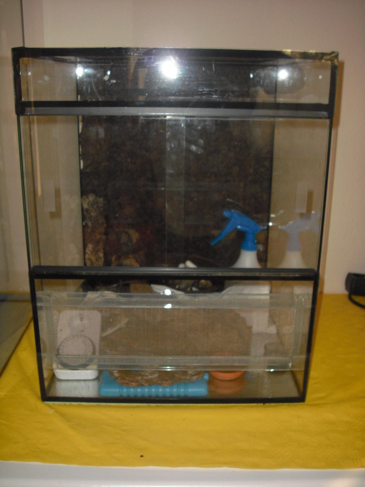 cham leon terrarium allterra mit zubeh r in essen tiere kleinanzeigen. Black Bedroom Furniture Sets. Home Design Ideas