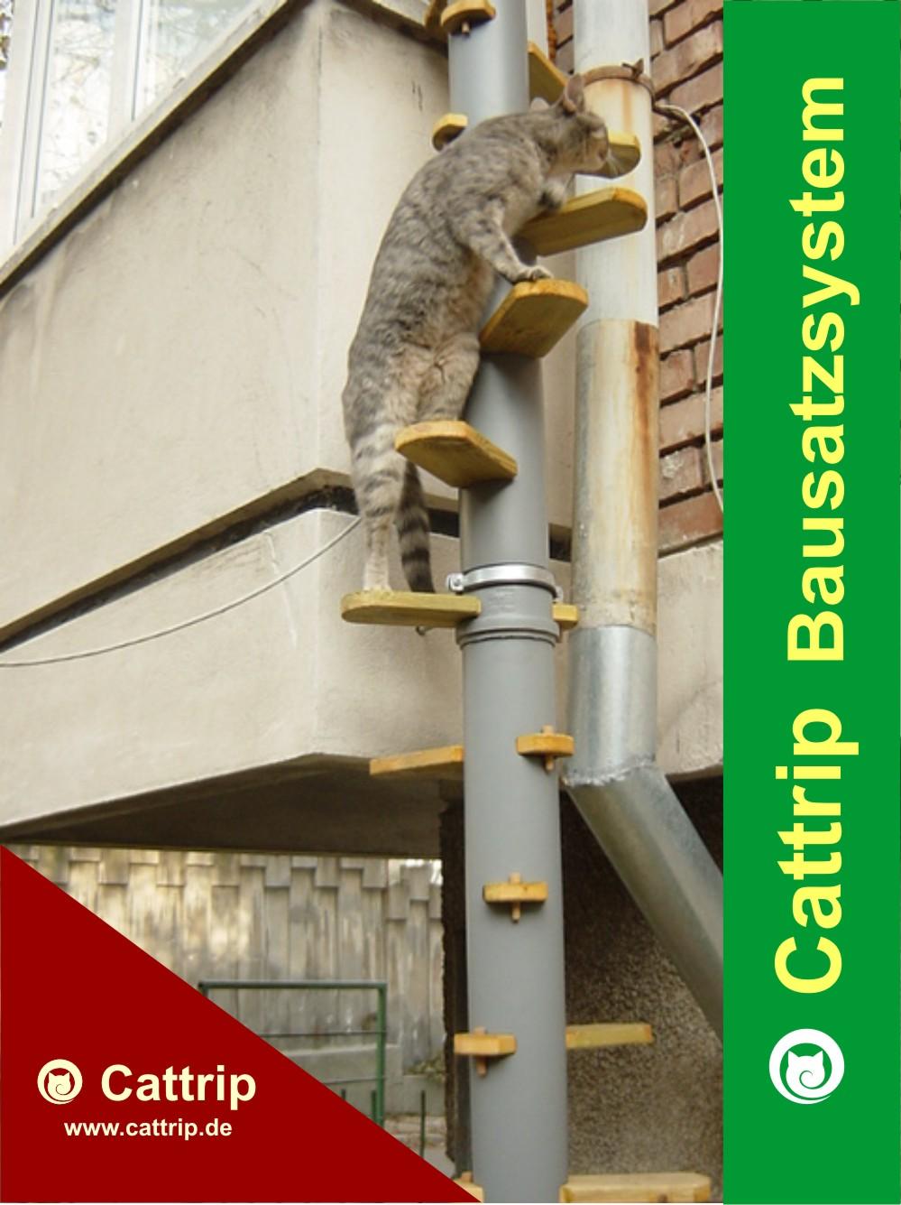 katzenleiter balkontreppe katzentreppe cattrip  marburg