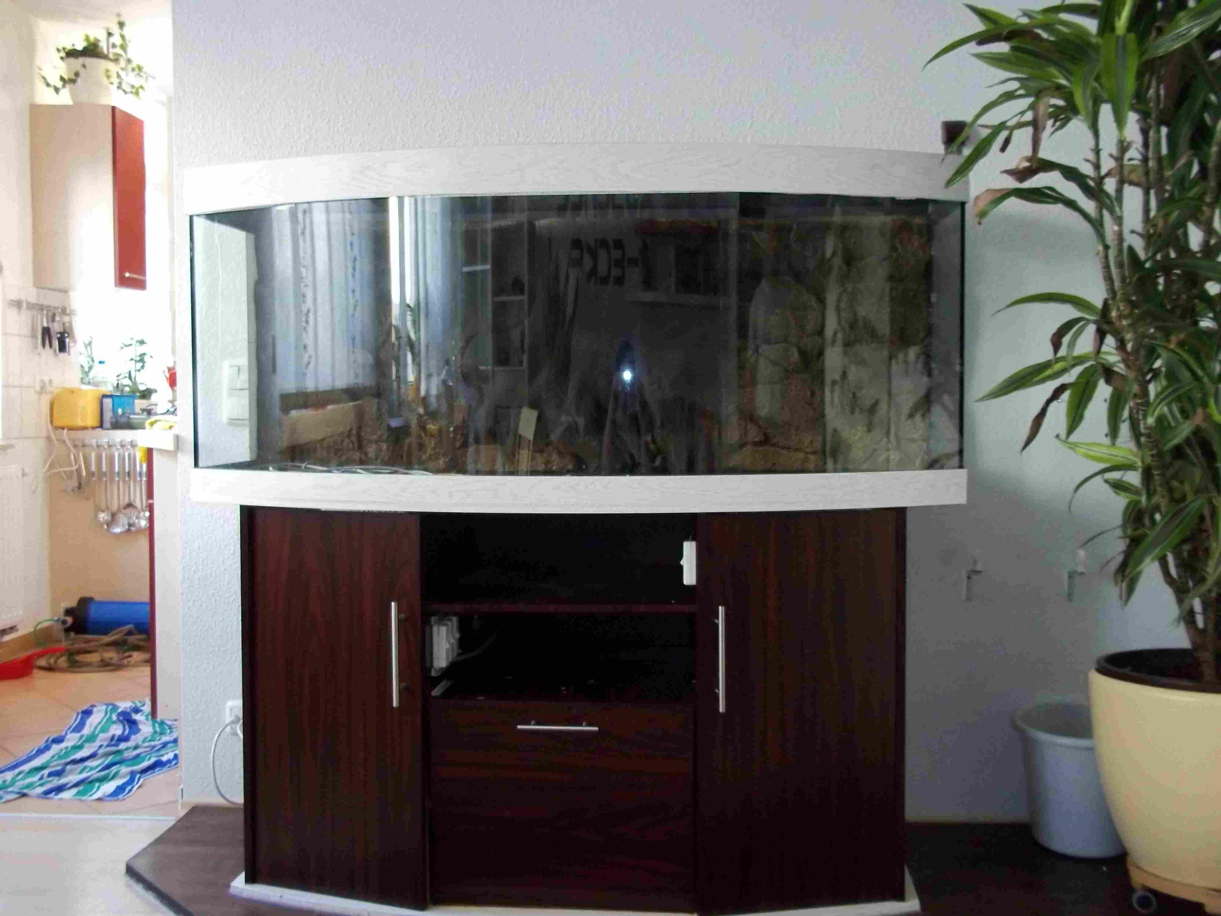 Juwel Aquarium Vision 450 In Gera Tiere Kleinanzeigen