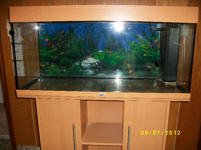 juwel panorama aquarium in berlin tiere kleinanzeigen. Black Bedroom Furniture Sets. Home Design Ideas