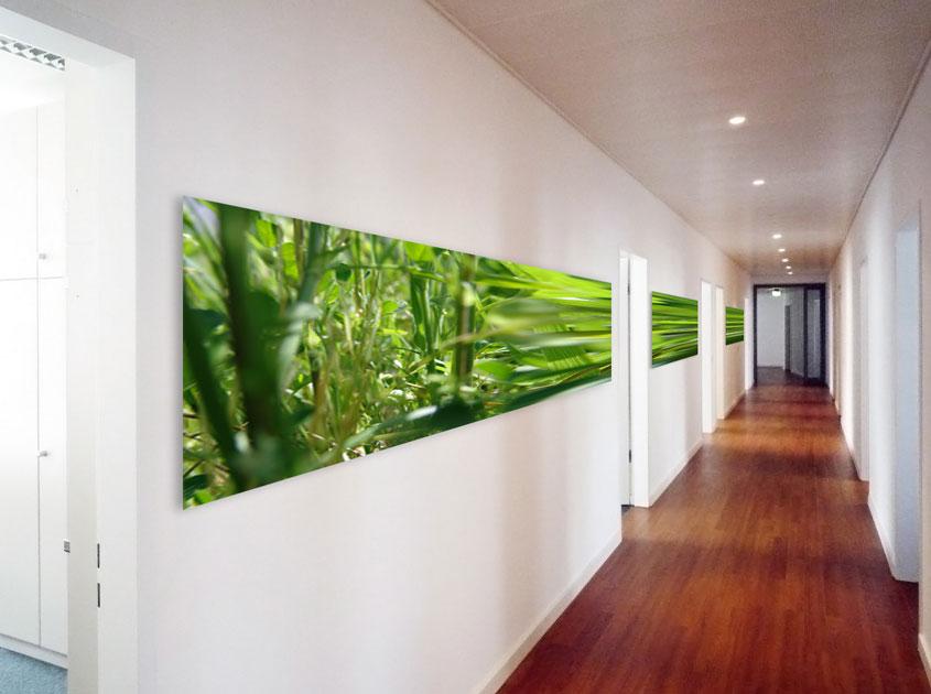 Bilder fürs Büro mieten von Kunstberatung Bailer in München | Büro ...