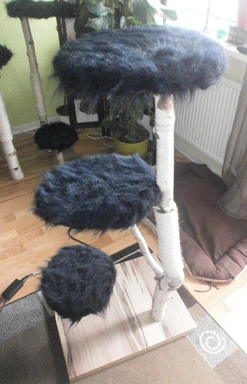 handanfertigung toller kratzbaum echt holz in rostock tiere kleinanzeigen. Black Bedroom Furniture Sets. Home Design Ideas